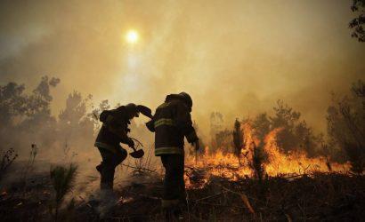 Balance de Onemi por incendios forestales: Se registran 57 a nivel nacional y siete se mantienen activos