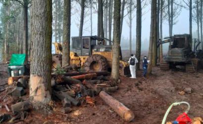 Al menos 3 maquinarias agrícolas incendiadas tras ataque en fundo cerca de Nueva Imperial