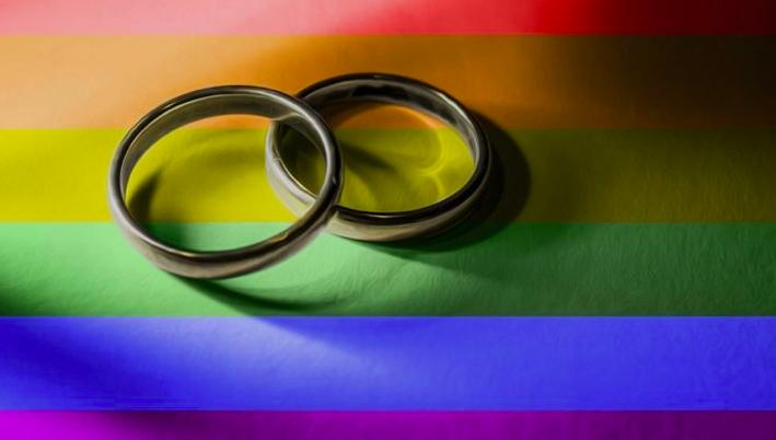 Senado pone en tabla proyecto de Bachelet sobre matrimonio homosexual