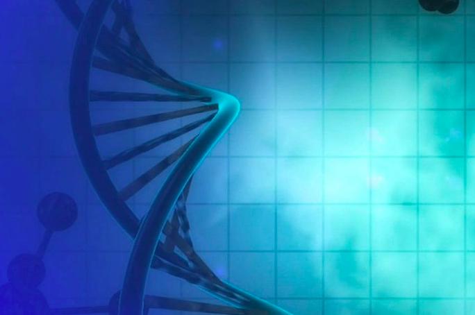 Primer éxito mundial de la biomedicina chilena: terapia génica para tratar enfermedades neurodegenerativas es exportada a Europa
