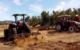 Aumenta tensión en La Araucanía por toma de predios: se estiman cerca de 120 terrenos ocupados