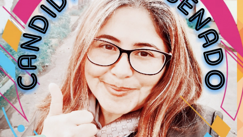 Partido Igualdad baja candidatura de Ana Vergara por proponer que Chile fuera una monarquía