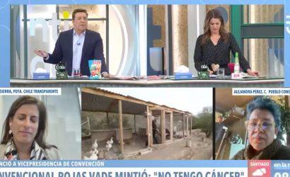 """Convencional de La Lista de Pueblo tras caso Rojas Vade: """"Vamos a ir cayendo uno a uno"""""""