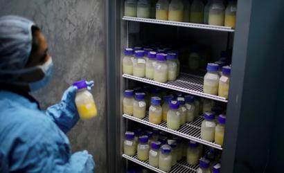 La leche materna mata a la mayoría de las cepas vivas del coronavirus, según un estudio