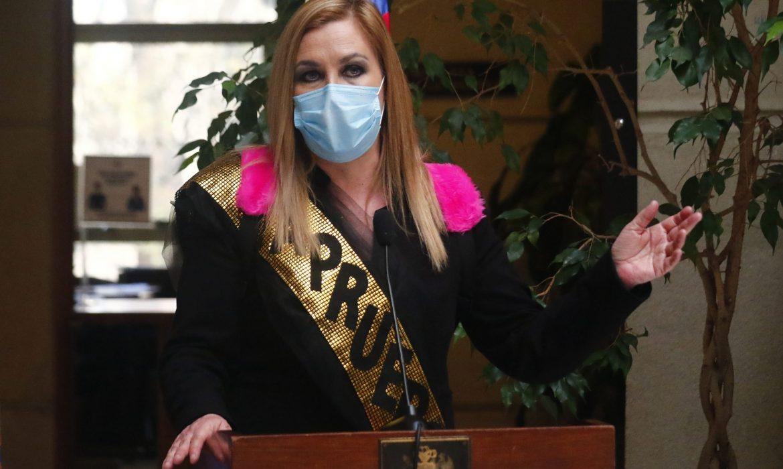 """Pamela Jiles: """"Yo creo en el asalto al poder, el poder no es algo que llega pacíficamente"""""""