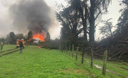Tromba marina arrasó plaza pública en Toltén: Árbol cayó sobre domicilio y causó incendio